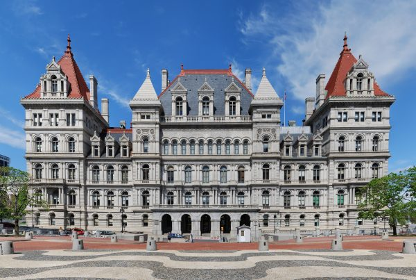 New York State Legislature Child Sexual Abuse